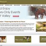 Quiet Valley website after redesign