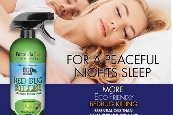 bed-bug-killer-hunter-graphics